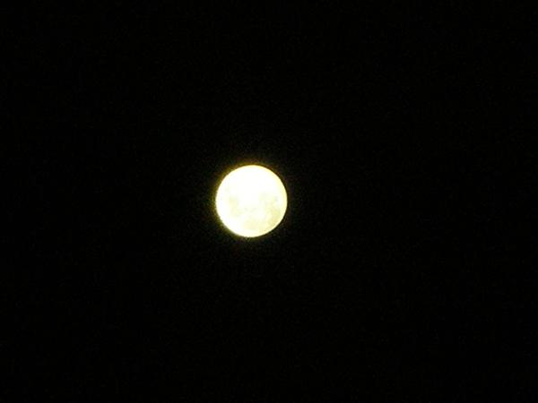 melbourne-moon
