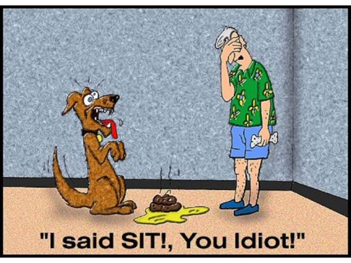 I said SIT! (dog cartoon)