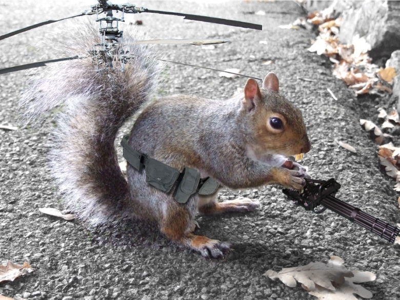squirrelhelicopter