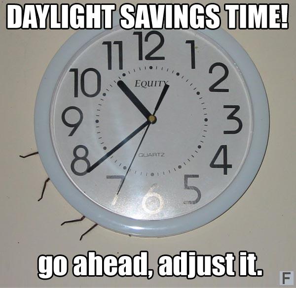 australia-spider-behind-clock