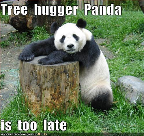 funny-pictures-tree-hugger-panda